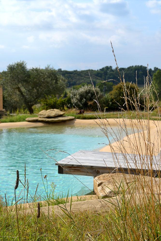 Piscine naturelle filtration au aquatique for Piscine issoire jardin aquatique